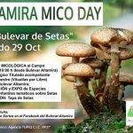 Concurso para excursión micológina de el Bulevar Altamira de Torrelavega