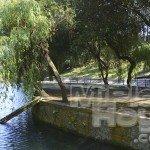 Estanque de patos Parque de Mataleñas