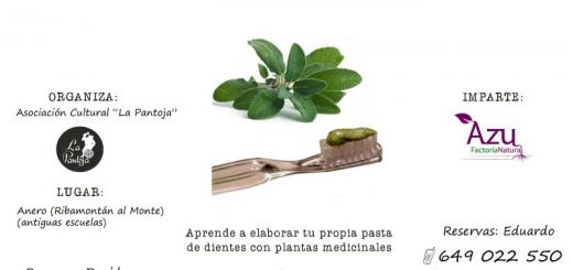 TALLER DE PASTA DENTAL HERBAL
