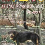 XXII Concurso nacional canino de Noja
