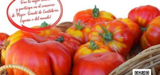 ii-feria-nacional-del-tomate-antiguo-en-bezana